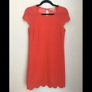 Coral scalloped hem shift dress